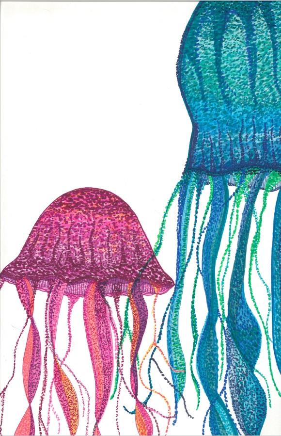 medusa-iv