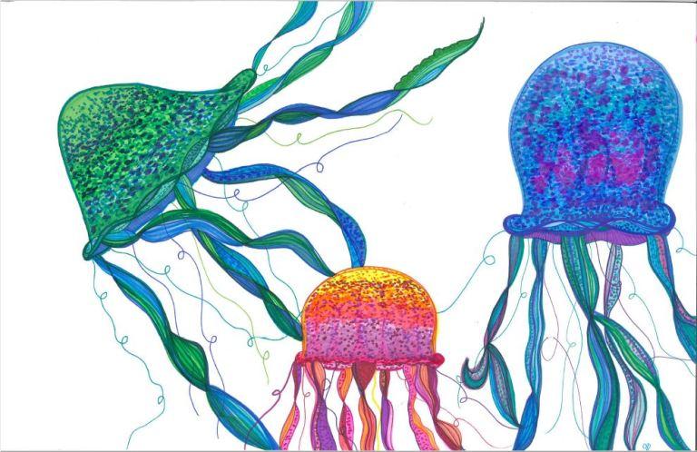 medusa v